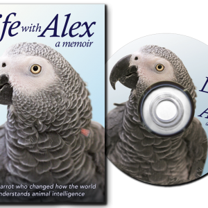 Life with Alex DVD