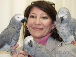 irene_parrots