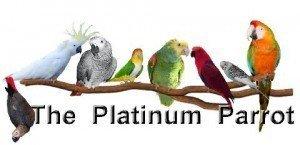 platparrot-300x145
