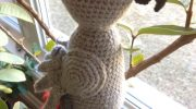 Win a crocheted African Grey!